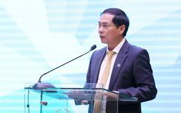 Thứ trưởng Bùi Thanh Sơn: Việt Nam tin tưởng lãnh đạo APEC chia sẻ giải pháp chiến lược tại hội nghị thượng đỉnh