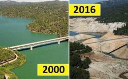 Giật mình trước những thay đổi nhanh đến đáng sợ do biến đổi khí hậu