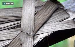 Ngắm chữ, hình vẽ cổ trên lá cây được kết lại thành cuốn sách quý