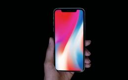 iPhone X được rao tại Việt Nam giá 50 triệu đồng