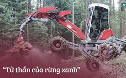 """Đây chính là cỗ máy có thể giúp người nước ngoài """"dọn sạch"""" cả khu rừng"""