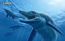 """Hé lộ bữa ăn cuối cùng của """"quái vật"""" ngư long cách đây 200 triệu năm"""
