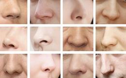 """Nghiên cứu mới: Hình dáng mũi của mỗi người là do thời tiết """"nhào nặn"""""""