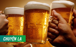 Lần đầu tiên xuất hiện bia sản xuất dựa trên ADN của người,  hứa hẹn hấp dẫn các quý ông