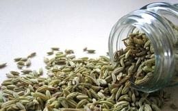 Một muỗng hạt thì là - 10 lợi ích sức khỏe