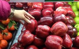 Liệu chúng ta có đang ăn táo Mỹ được đông lạnh 1 năm? Đây chính là câu trả  lời