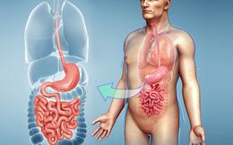 7 cách chăm sóc dạ dày để không lo bị bệnh: Mỗi người hãy nên làm ngay từ hôm nay