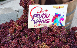 Lễ hội rượu vang ở Sun World Ba Na Hills: Ép nho, uống vang, ngắm hoa giữa thiên nhiên yên bình