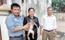 Người dân tự nguyện giao nộp động vật hoang dã quý hiếm
