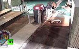 Liều lĩnh lái máy xúc đi cướp tiền từ ATM