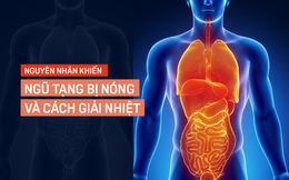 5 chuyên gia lý giải tình trạng ngũ tạng bị nóng và cách khắc phục đơn giản bằng thực phẩm
