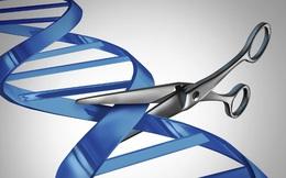 """Trung Quốc đã thất bại, Mỹ vừa thành công: """"Cắt ADN"""" sửa khiếm khuyết gen người"""