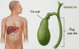 Triệu chứng âm thầm báo hiệu bệnh ung thư túi mật