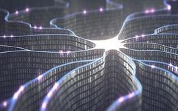 """Máy tính của tương lai có thể """"suy nghĩ"""" như bộ não người?"""