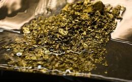 """Thụy Sĩ: """"đãi"""" được 43 kg vàng từ nước thải"""