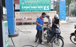 Vì sao nhiều doanh nghiệp đề nghị tạm dừng bán xăng E5?