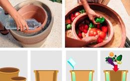 """Chiếc """"tủ lạnh"""" không cắm điện đặc biệt bậc nhất thế giới, trữ hoa quả tới 12 ngày"""