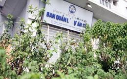 """Cận cảnh chung cư xây xong bỏ hoang 10 năm, cây cỏ mọc như """"rừng"""" giữa Hà Nội"""