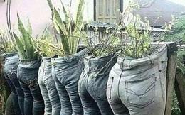 """Những ý tưởng làm vườn có 1-0-2 đến các bác nông dân cũng phải """"ngả mũ bái phục"""""""