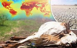 Trái đất sẽ không bao giờ ngừng nóng lên và tốc độ cũng ngày càng nhanh hơn