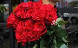 Cành hồng đỏ cao bằng một cô gái giá 500.000 gây sốt mùa Valentine năm nay