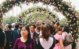 Sở Văn hóa Hà Nội yêu cầu tháo hoa giả, thay thế bằng hoa thật trong lễ hội hoa hồng Bulgaria