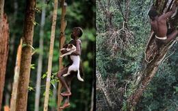 Sống trên những ngôi nhà cây cao tới 50m, bộ lạc bí ẩn khiến nhiều người khâm phục sức sống phi thường