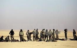 Các lực lượng dân chủ Syria thành lập hội đồng quản lý Raqqa