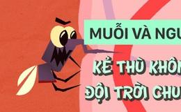 Lý do vì sao muỗi và người chắc chắn không thể đội trời chung