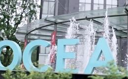 Tổng tài sản giảm 5.400 tỷ sau 4 năm, Ocean Group còn lại gì?