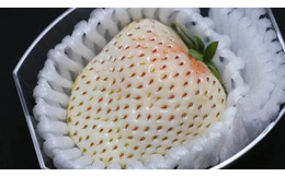 Có gì bên trong dâu tây trắng khổng lồ 200.000 đồng/quả độc nhất vô nhị tại Nhật Bản?