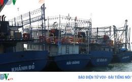 Bình Định: Tàu vỏ sắt nằm bờ, phải đền bù thiệt hại cho ngư dân