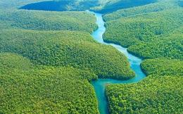 Phát hiện kỳ thú này đã đưa sông Amazon soán ngôi sông Nile với hạng mục sông dài nhất thế giới