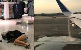 """Cứu hãng United Airlines thoát khỏi thảm họa, cặp vợ chồng trẻ nhận """"hậu tạ"""" không ngờ"""