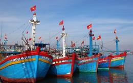 Rà soát, kiểm tra chất lượng tàu cá đóng theo Nghị định 67