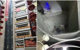 Tiểu tiện bừa bãi trong thang máy, cậu bé 6 tuổi gặp tai nạn thương tâm khi rơi từ tầng 7 xuống đất