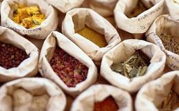 Không để tình trạng dược liệu bị thu mua luộc tinh chất rồi bán lại cho Việt Nam