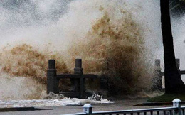 Bão Hato đã mạnh, nhưng 4 siêu bão khủng khiếp này cũng chẳng chịu kém cạnh