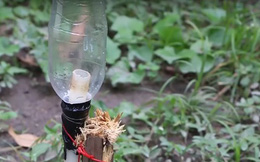 Minh chứng cho việc chai nhựa là thứ có thể tái chế làm nhiều việc nhất