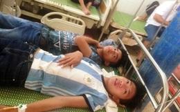 Nghệ An: Bị ong rừng tấn công bất ngờ, 15 học sinh phải nhập viện cấp cứu