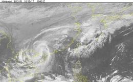 Tin bão số 11 mới nhất ngày 16/10: Bão tiến gần bờ, giật cấp 13