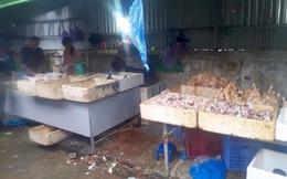 Hà Nội: Bất ngờ với gà đông lạnh bán rẻ như rau tại chợ đầu mối