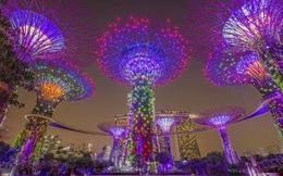 Cuộc sống về đêm thú vị ở Singapore