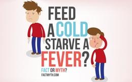 Lúc ốm đau nên ăn hay nên nhịn?