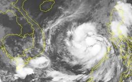 Xem clip đáng sợ khi bão Damrey đổ vào Bình Định