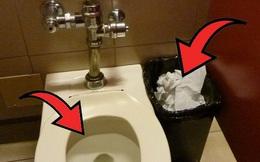 Nên vứt giấy vệ sinh vào bồn cầu hay thùng rác và câu chuyện chứng minh: Sự sạch sẽ chỉ là tương đối