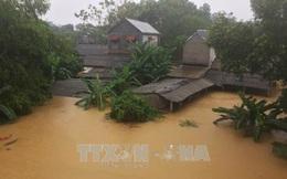 Mỹ giúp Việt Nam hơn 1 triệu USD khắc phục hậu quả bão và phòng chống thiên tai
