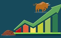 Dòng tiền ầm ầm đổ vào thị trường, VnIndex tiến gần cột mốc 960 điểm