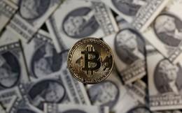 Lỡ tay vứt ổ cứng chứa hơn 7.000 bitcoin, một kỹ sư người Anh quyết xới tung bãi rác để tìm lại