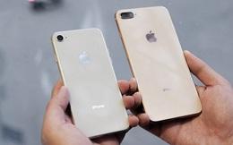 iPhone 8 Plus Lock về Việt Nam, rẻ hơn hàng chính hãng tới 8 triệu đồng